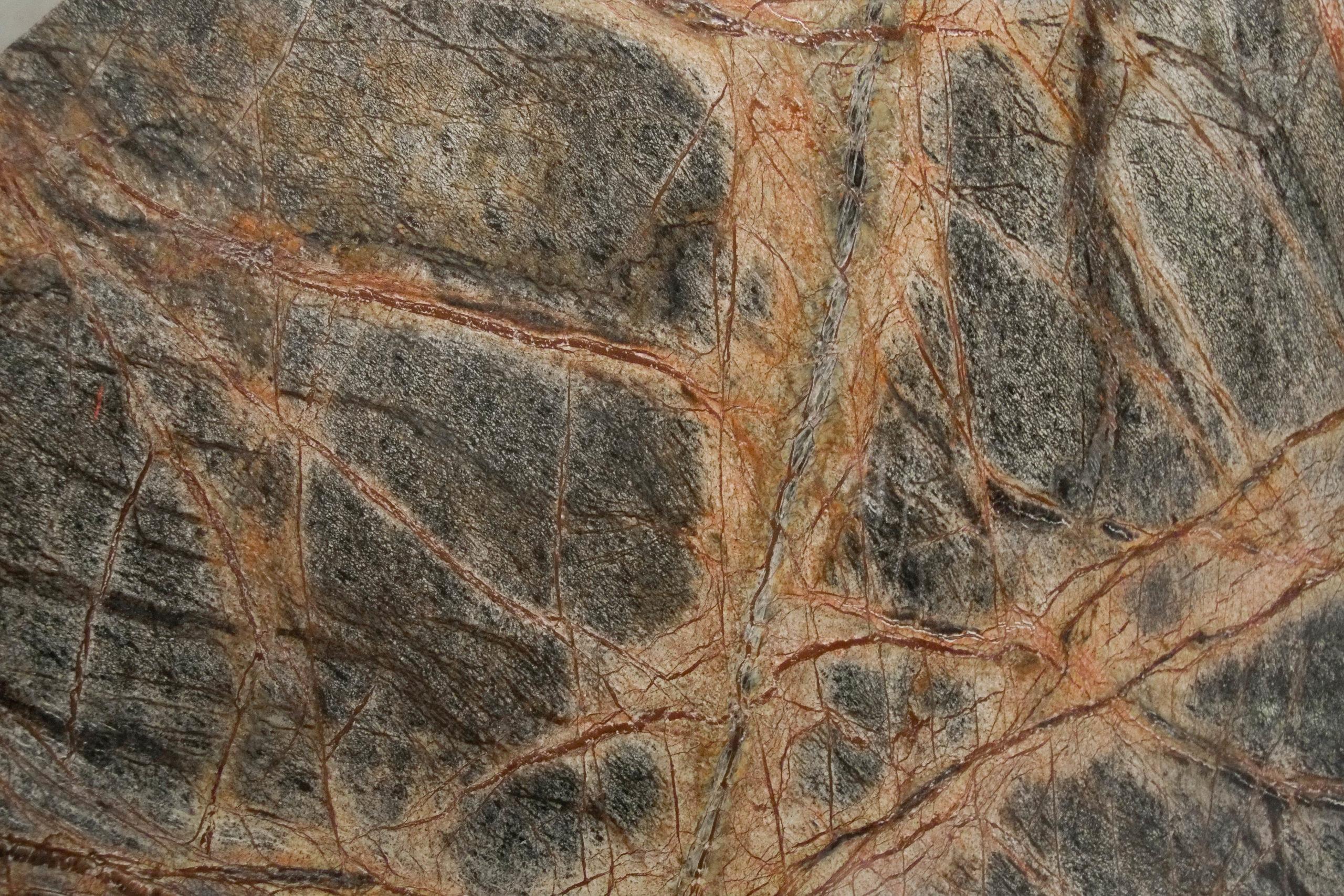 marmol rainforest en mesa
